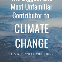 The Biggest and Most Unfamiliar Contributor to Climate Change